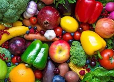 Food Provisions